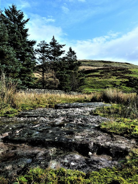 Southanan Cup & Ring Marked Rock - Fairlie