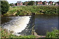 NY4154 : Weir on River Petteril by Roger Templeman