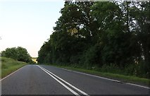 TL0061 : Bedford Road, Sharnbrook by David Howard