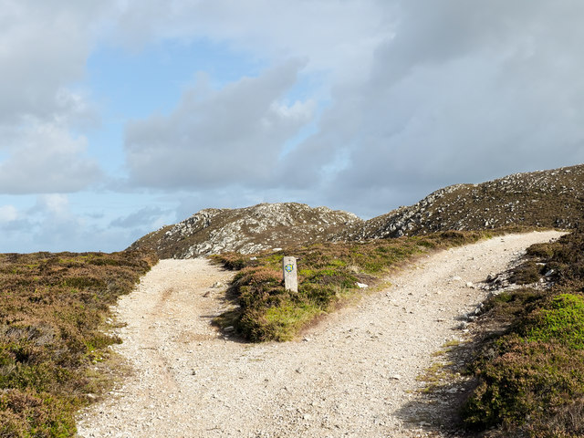 Forking of paths on Holyhead Mountain