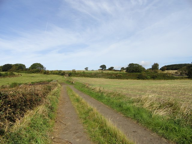 Path through the fields west of Eden Hill