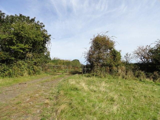 Gateway onto the old line near Eden Hill