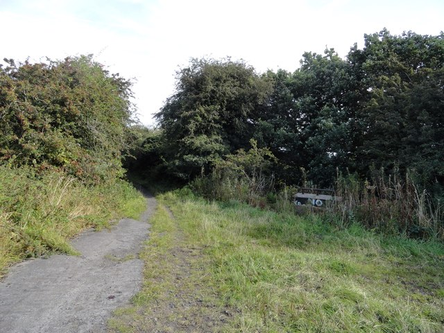 The track to No Place at Acton Dene