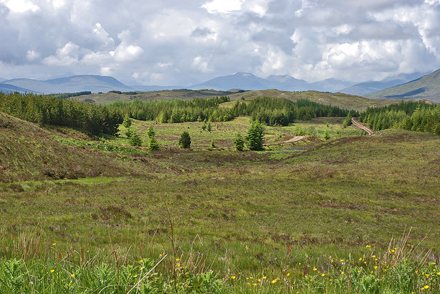 View south west over moorland and forestry