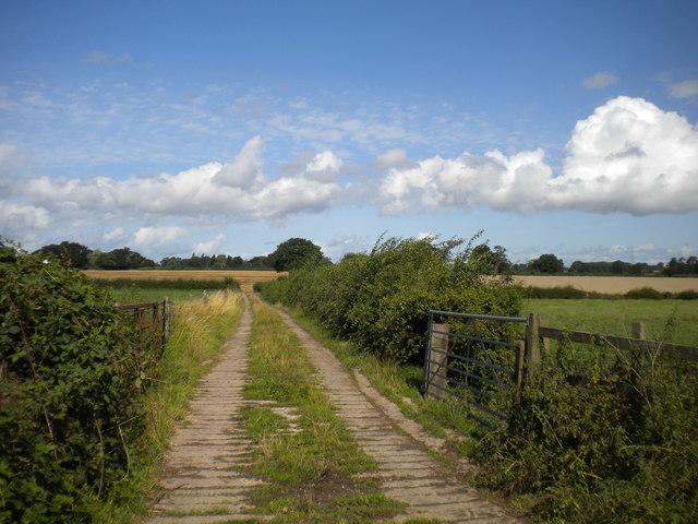 Farm track north of Mickleover Trail
