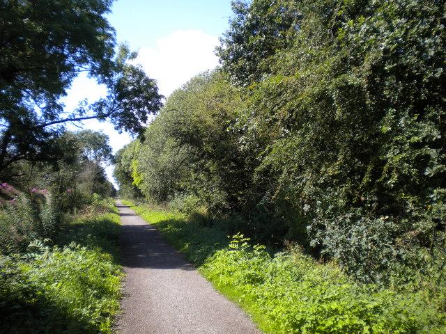 Mickleover Trail west of Mickleover (2)