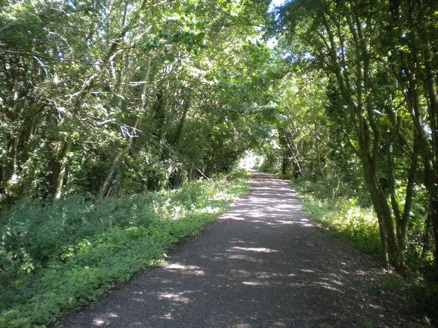Mickleover Trail west of Mickleover (5)