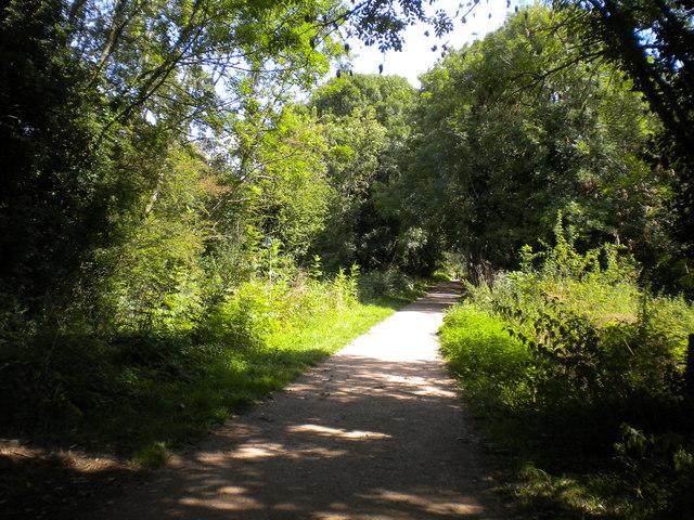 Mickleover Trail west of Mickleover (7)