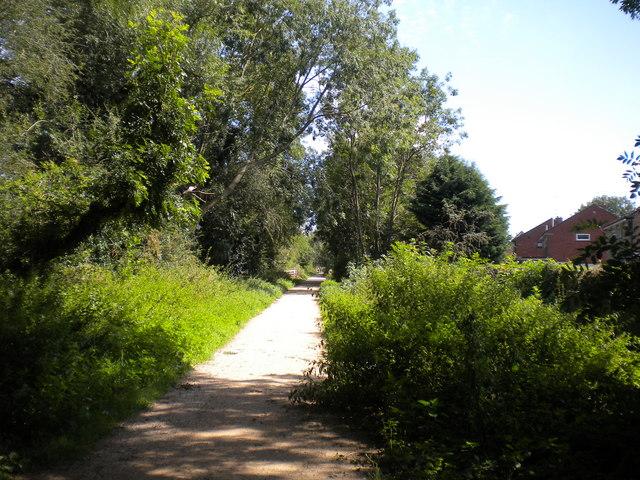 Mickleover Trail west of Mickleover (8)