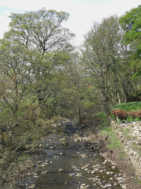 Middlehope Burn north of Front Street