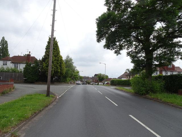 Meadow Road View