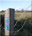 ST3156 : Waymarker by Bob Harvey