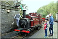 SH6541 : Prince takes water at Tan-y-Bwlch by Richard Hoare