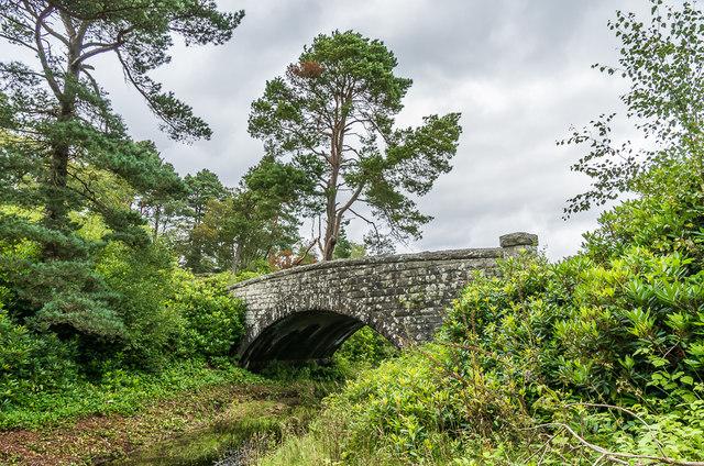 Bridge, carriage drive