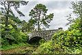 NU0701 : Bridge, carriage drive by Ian Capper
