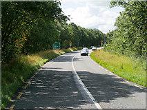 R4444 : N21 South of Adare by David Dixon