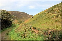 SS6549 : The cliff-top path around Hill Brook, near Hunters' Inn by Martin Tester