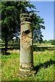SJ4160 : Roman Column in Eaton Hall Gardens by Jeff Buck