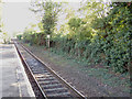TL9033 : Bures Railway Station by Adrian Cable