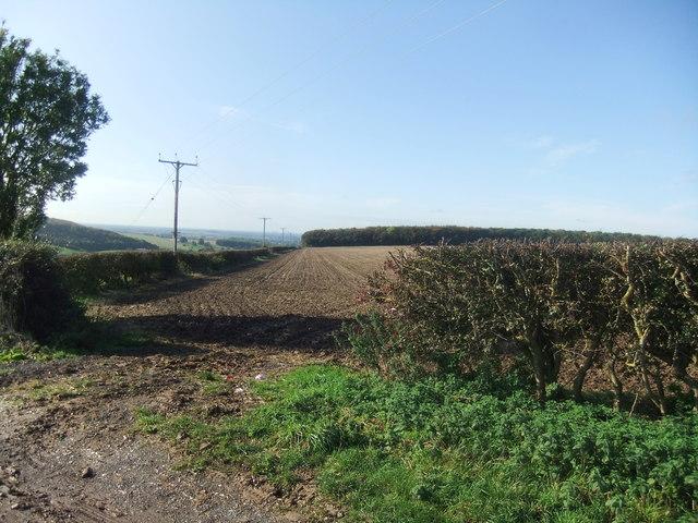 Londesborough Wold