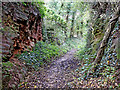 SO8297 : Bridleway near The Clive in Staffordshire by Roger  Kidd