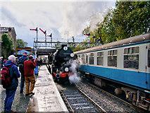 SD8010 : Steam Gala at Bury by David Dixon