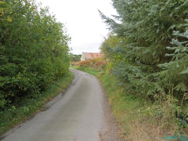 Jaffray Road at Wester Beltie