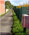 SO4958 : Path on the east side of South Street, Leominster by Jaggery