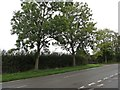 SP6988 : Foxton Road Junction by Ian Rob