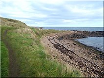 NO6106 : Shore line near West Ness by Oliver Dixon