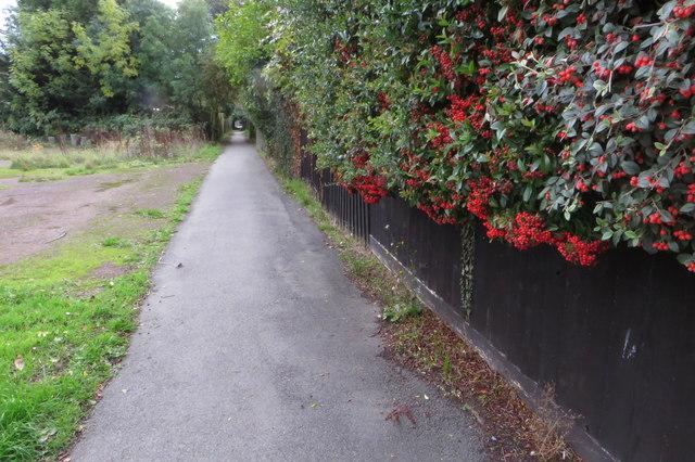 Public footpath into Rushden