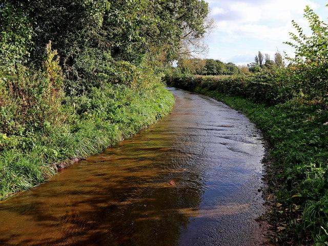 Bennett's Lane south-east of Pattingham in Staffordshire