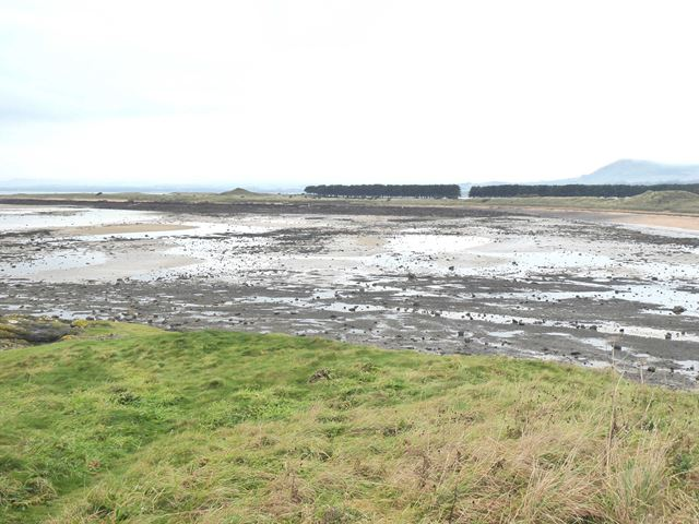 Shell Bay at low tide