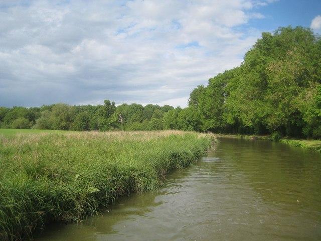 Oxford Canal: Reach in Kings Sutton