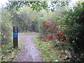 TQ3453 : NCN21 near Caterham by Malc McDonald