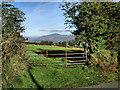 S7138 : Field Gate by kevin higgins