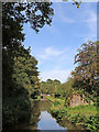 SJ9851 : Caldon Canal south-east of Cheddleton in Staffordshire by Roger  Kidd