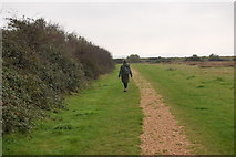 SZ3394 : Path from Normandy Lane by Trevor Harris