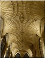 TL1998 : Carved fan vaulted ceiling by Russel Wills
