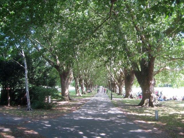 Cambridge: Jesus Green