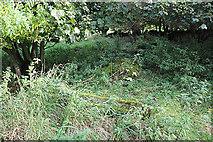 NT5570 : Old Gravestones in Baro Kirkyard (5) by Anne Burgess