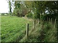 NY5245 : Public footpath on the south side of Aimbank by Christine Johnstone