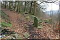 SD9926 : Stone post at footpath junction in Higher May Royd Wood by Luke Shaw