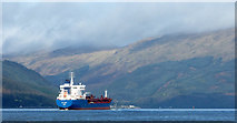 NS1981 : Bro Nordby in Loch Long by Thomas Nugent