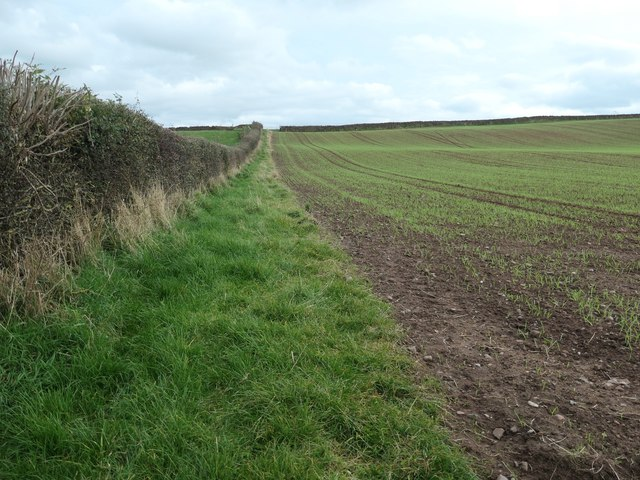 Public footpath heading east to Towngate, Ainstable