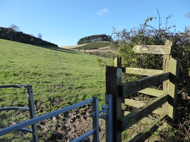 Scene on the footpath towards Bromlow Callow, Shropshire