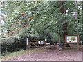 TQ3964 : Well Wood, near West Wickham by Malc McDonald