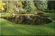 TQ2479 : View of the pond in the Kyoto Gardens in Holland Park by Robert Lamb