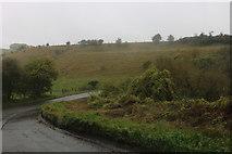 SU3187 : Hill by the B4507, Kingston Lisle by David Howard