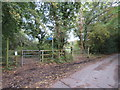 TQ3859 : Scotshall Lane, near Warlingham by Malc McDonald